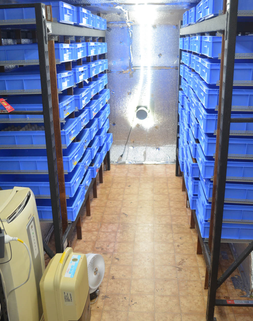 photo of a commercial mealworm farm with multiple racks of blue mealworm trays. Mealworm farm is climatically controlled with an air conditioner, humudifier, ventilation fans and aluminium reflective insulation.