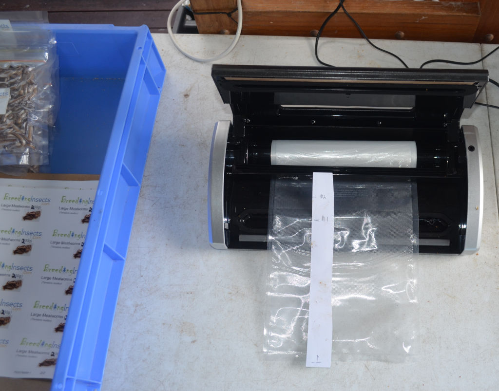 Photo of black vacuum sealer being used freeze live insects for pets and produce stores. Shows a translucent plastic roll about to be sealed. Adjacent blue box has sealed bags of insects and product stickers for bags.