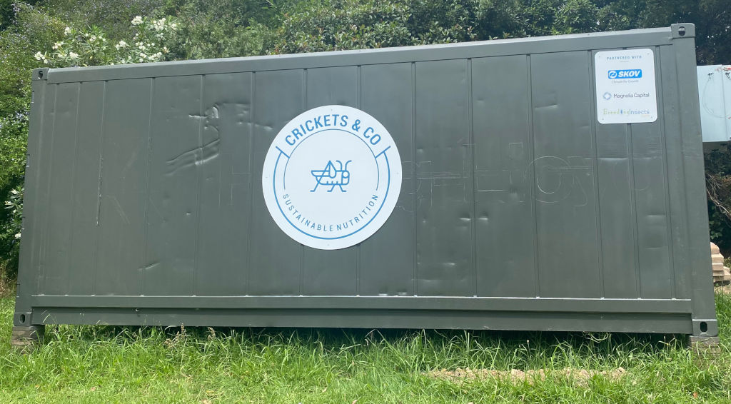 Photo of a grey shipping container of an insect farm. Insect farm is operated by Crickets and Co in partnership with BreedingInsects.com